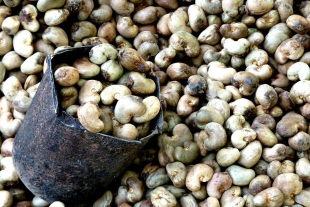 cashew-nut-52064_1920